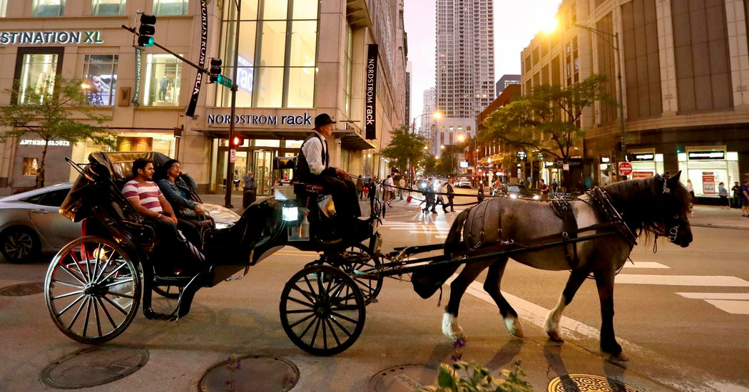 Chicago Bans Horse-Drawn Carriages Starting in 2021
